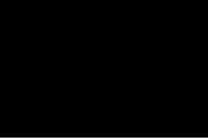 Logo Ostrowski Styl